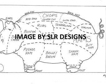 Pig Diagram - Side View