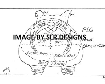 Pig Diagram - Front Cross Section