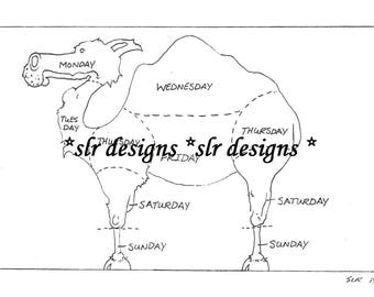 camel diagram