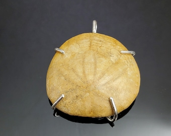 Sterling Silver and California Sand Dollar Fossil Pendant