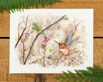 Rufous Hummingbird at Salmonberry 8.5x11 sustainable bamboo fine art print