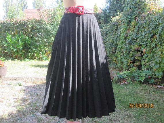 Pleated Wool Skirt / Pleated Skirts / Wool with Po