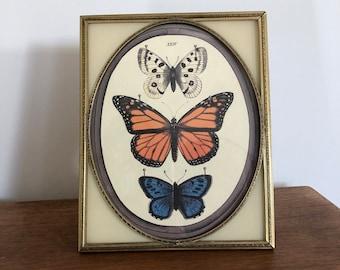 Vintage picture frame brass picture frame framed butterflies vintage decor