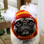 Sports Team- Dog Hat/Made to Order