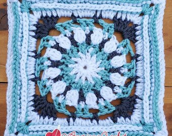 Robin Circle in A Square Crochet Pattern