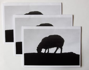 3 cards of my original B&W photo of a sheep