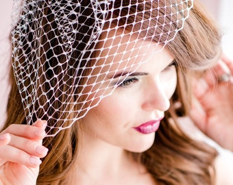 Silver Birdcage Veil, French Netting, Silver Veil, Birdcage Veil, Birdcage Veils, Silver Wedding Veil, Metallic Birdcage Veil, French PARIS