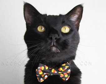Cat Bow Tie and/or Collar Set - Cuckoo for Candy Corn - Halloween Cat Accessory