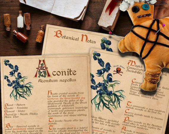 BANEFUL ACONITE Witch's Herb  For your Book of Shadows - Instant Download