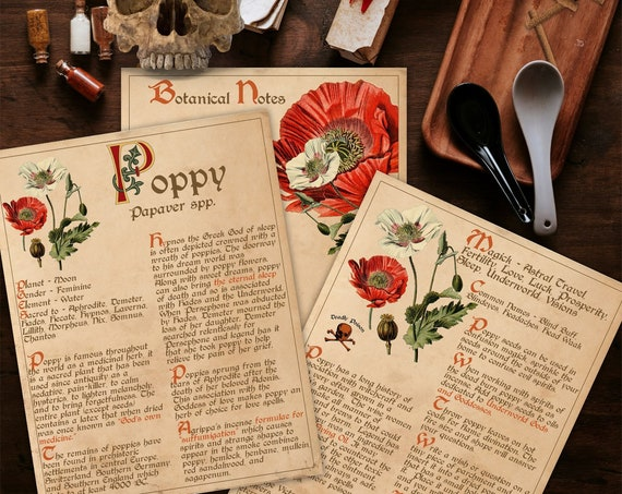 BANEFUL POPPY Witch's Herb  For your Book of Shadows - Instant Download