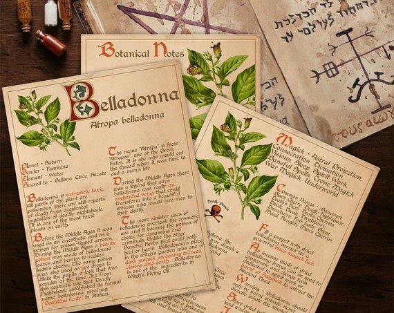 BANEFUL BELLADONNA Witch's Herb  For your Book of Shadows - Instant Download
