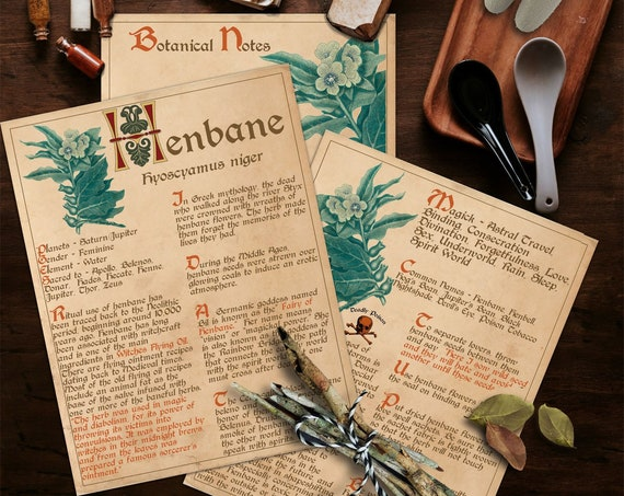 BANEFUL HENBANE Witch's Herb  For your Book of Shadows - Instant Download
