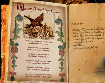 RAVEN BANISHING CHANT, Digital Download, Book of Shadows Page,Grimoire, Scrapbook, Wicca, Pagan, Witchcraft, White Magick, Magick Spell