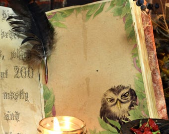 LITTLE OWL  Blank Book of Shadows Page, Medieval Journal, Digital Download, Grimoire,Spells, Magick, Wicca, Pagan, Witchcraft, WhiteMagick