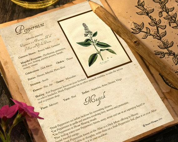 Peppermint Magick Herb
