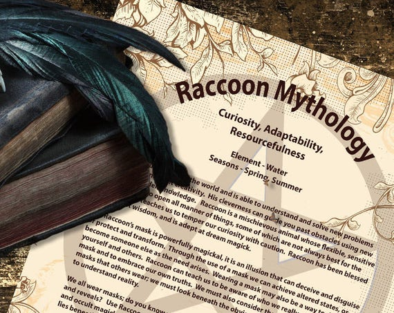 Raccoon Mythology