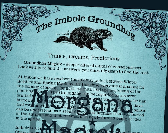 The Imbolc Groundhog