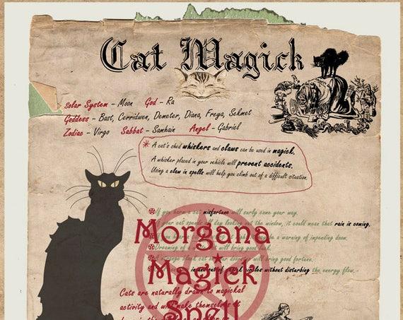Cat Magick