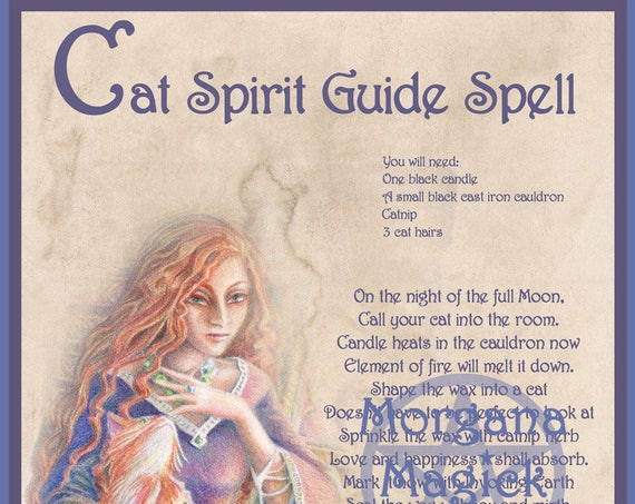Cat Spirit Guide Spell