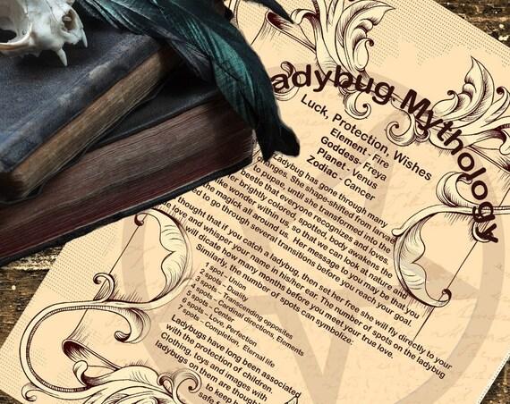 Ladybug Mythology
