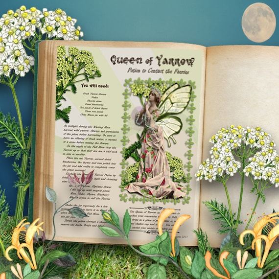 Queen of Yarrow Potion