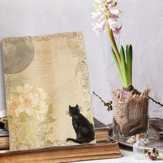 Cat and Moon Book of Shadows Page