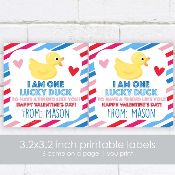 Labels and Resealable Treat Favor Bags Set of 20 or 30 Lucky Duck Valentine Stickers