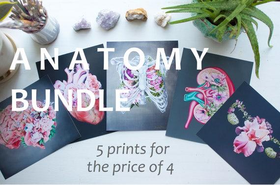 Floral Anatomie Bundle anatomische Kunst Kunstdrucke