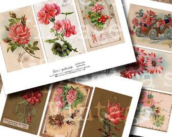 Vintage Postcards - Pink Floral