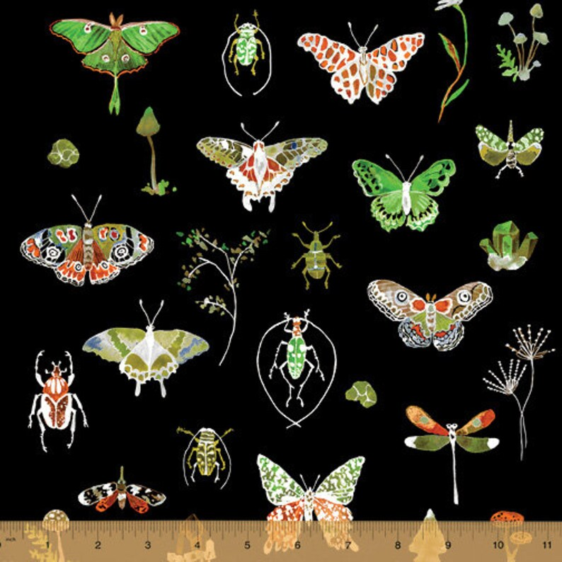 1 Yard Curio BUTTERFLY MOTH MUSHROOM 50864-1 Black Crystals Insect Fern Study Dragonfly Wood Beetle Windham Quilting Sewing Nature Fabric