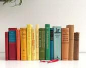 Vintage Rainbow Cookbook Collection - Fourteen Vintage Cookbooks