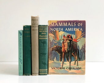 Vintage Collected Book Set - Animal/Wildlife Book Collection