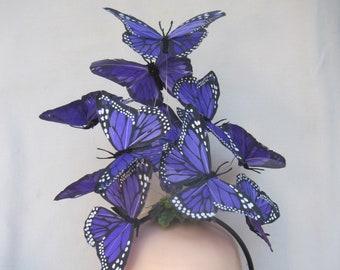 Königliches Purpur Monarchfalter Kopfstück