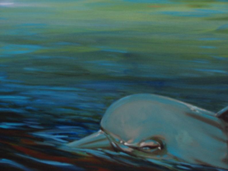 Evening Dolphin image 0