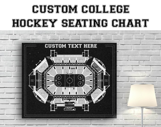 CUSTOM Any University Hockey Team or Arena Printed to Fit Your Exact Specifications! See Description for Details.