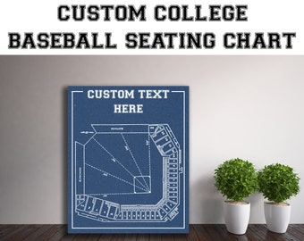 CUSTOM Any University Baseball Team or Field Printed to Fit Your Exact Specifications! See Description for Details.
