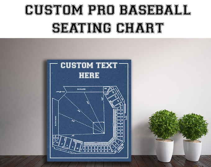 CUSTOM Any Pro Baseball Team or Field Printed to Fit Your Exact Specifications! See Description for Details.