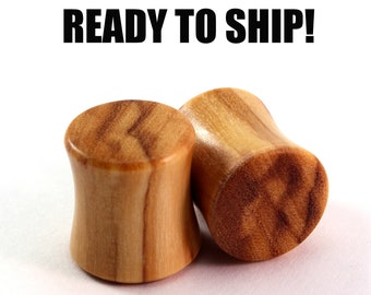 READY TO SHIP - 00g+ (10mm) Olivewood Blank Wooden Plugs - Pair - Premade Gauges Ship Within 1 Business Day!