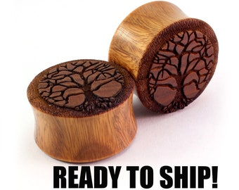 "READY TO SHIP 7/8"" (22mm) Lignum Vitae Tree of Life Wooden Plugs - Premade Gauges Ship Within 1 Business Day!"
