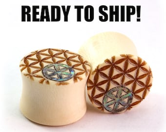 Ready to Ship Wood Plugs