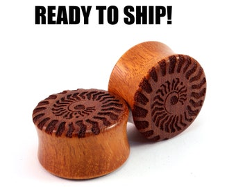 "READY TO SHIP - 7/8"" (22mm)  Osage Orange Ammonite Wooden Plugs - Premade Gauges Ship Within 1 Business Day!"
