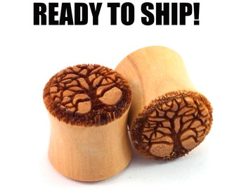 "READY TO SHIP - 7/16"" (11mm) Olivewood Tree of Life Wooden Plugs - Pair - Hand-Turned - Premade Gauges Ship Within 1 Business Day!"