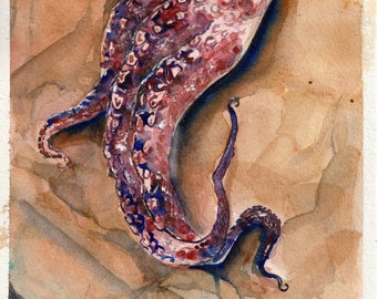 Small Watercolor Painting - Tentacle