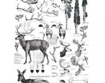 Furniture Decal -  Deer Transfer Transfer by ReDesign with Prima
