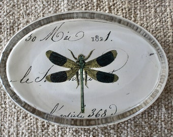 Print Glass Paperweight in Gift Box Paperweights IDR-1PWDragonflies Dragonfly Over Water Advanta
