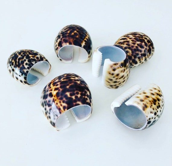 Vintage Seashell Napkin Rings Set of (6) Natural Tiger Cowrie Shell Napkin Holders Beach House Decor