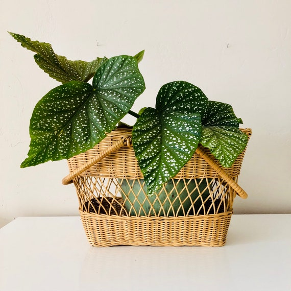 Vintage Wicker Basket with Handles Woven Wicker Picnic Basket Plant Holder Boho Decor