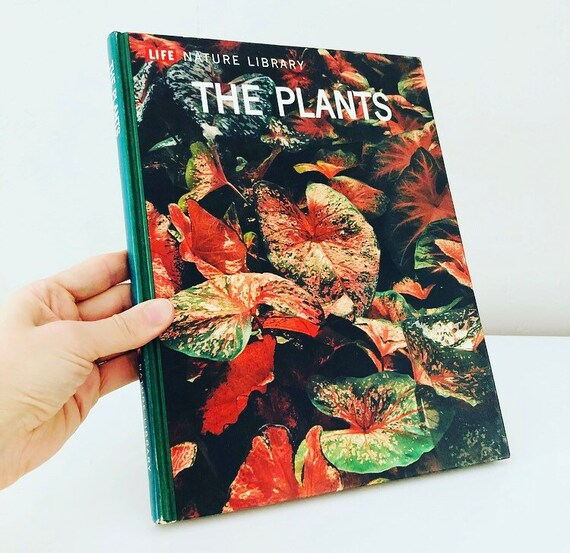 Vintage LIFE The Plants Hardcover Book NATURE LIBRARY Reference Book of Plants Cactus + Fungi Boho Decor