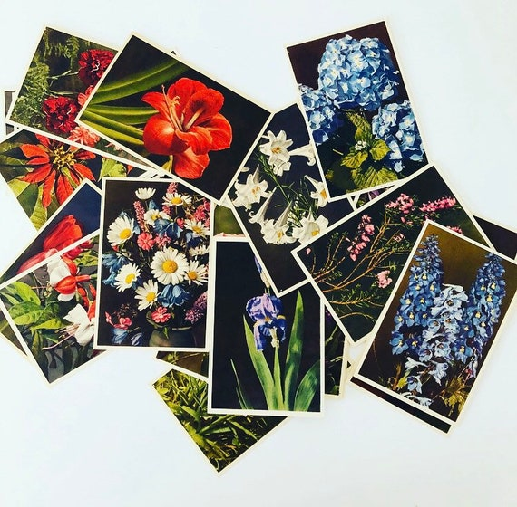 Vintage Floral Unused Postcards Set of (23) 1940s Thor E Gyger Botanical Flower Postcard Collection Paper Stationery Printed in Switzerland