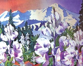 Lupines with Mt. Iliamna